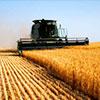 Кейс Сельскохозяйственный кооператив